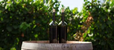 Celebrate Women In Wine Kate Goodman From Penley Estate